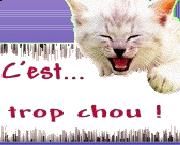 tropchouT