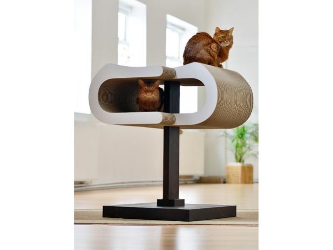 griffes du chat archives le club fran ais du sacr de. Black Bedroom Furniture Sets. Home Design Ideas