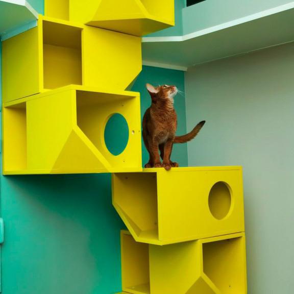 Aristide-un-hotel-4-pour-chats_cdc_big