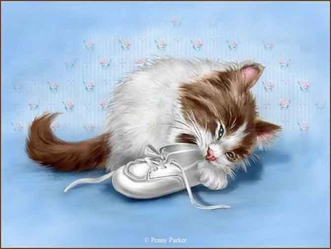 Le Pica chez le chat