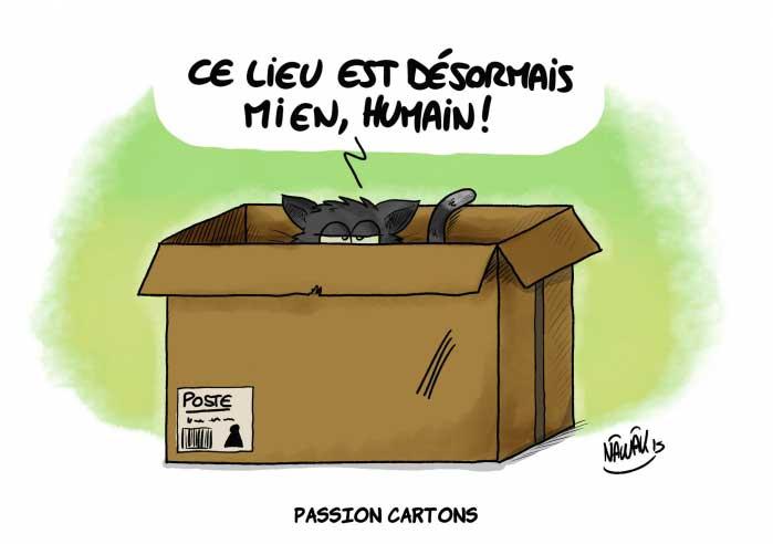 Chat cartoon