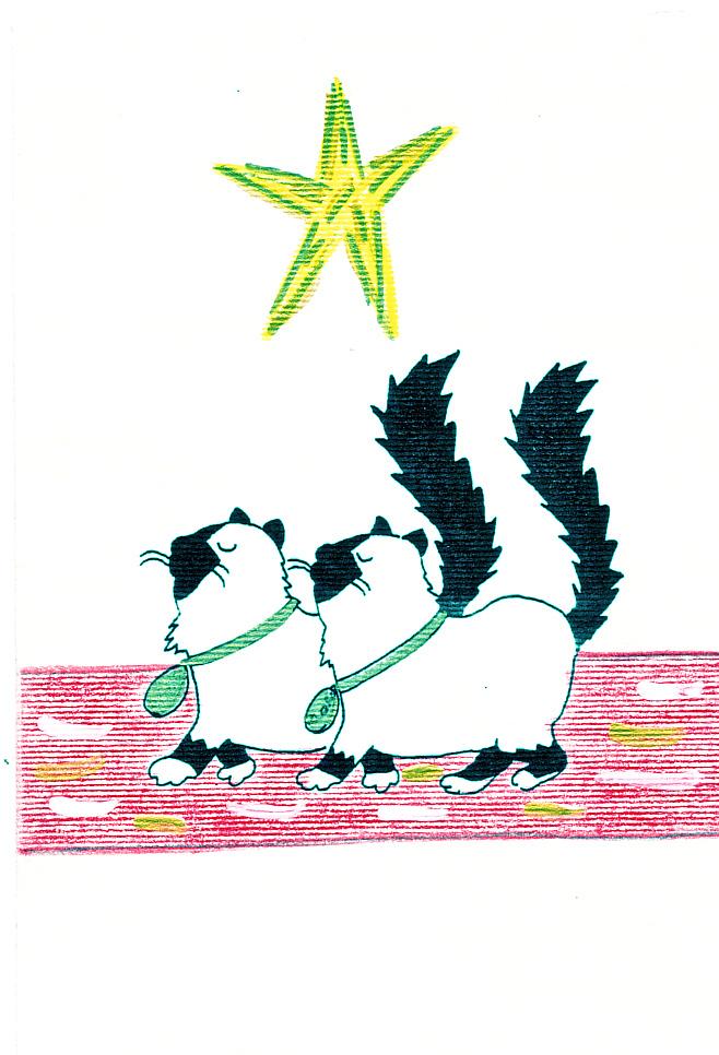 fiers-birmans