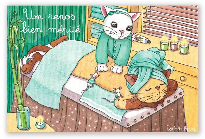 L'ostéopathie pour les chats